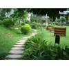花园绿化示例